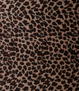 Leopard-Plush