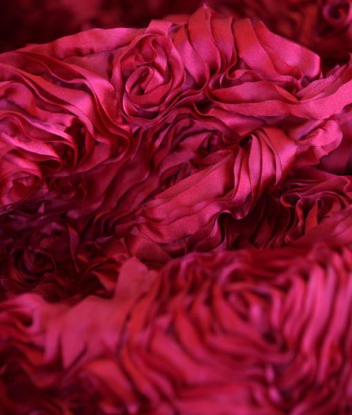 Dozen Roses Satin Red