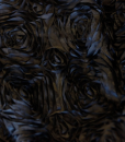 Dozen Roses Satin Black