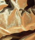 Velvet Gold