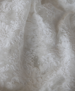 Antique Lace Ivory