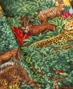 Jason's Safari