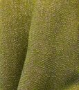 Stardust Kiwi