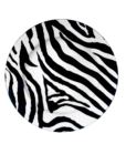 Zebra Charger Plate